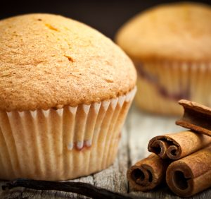 Great Low Carb Paleo Muffin Cinnamon 2oz