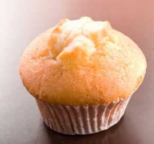 Great Low Carb Low Fat Vanilla Muffin